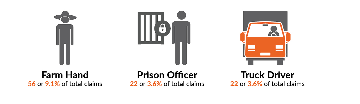 The three worker occupation with the highest proportion of serious injuries was Farm hand 56 serious injury claims or 9.1% of total claims. Prison Officer and Truck Driver, both with 22 or 3.6% of total claims.